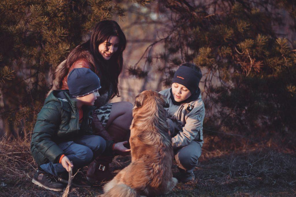 Hundmenschteam Hannover Preise